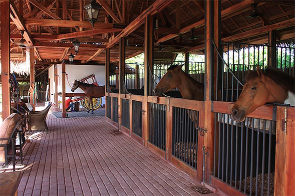 Equestrian Center stables