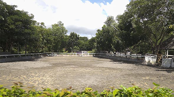 The Equestrian Center's Olympic-sized dressage arena