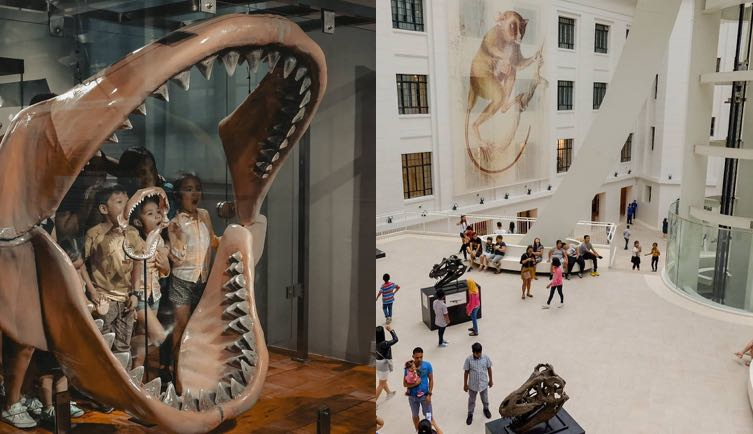 10 Family-Friendly Museums to Visit in Metro Manila - DG