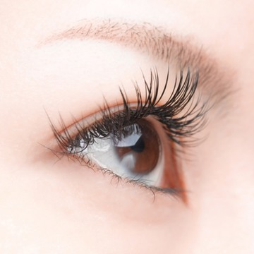 skin manila lash lift cover